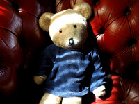 Teddy Bear on Red Leather Couch