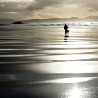 Man Walking his Dog, Ballyheigue Beach, County Kerry